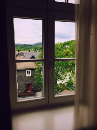 Hotel Diedrich: Blick aus dem Fenster in Richtung Parkplatz