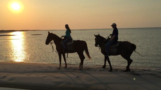 Cedar Island, Carolina do Norte: Riding in the sunset.