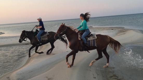 Cedar Island, Carolina do Norte: Canter