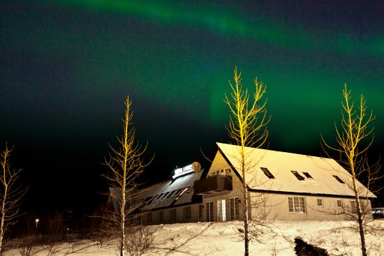 Hotel Laxnes: Northern Lights