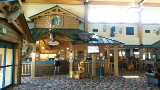 Tundra Lodge Resort Waterpark & Conference Center: Tundra Lodge Resort & Water Park, Green Bay, WI