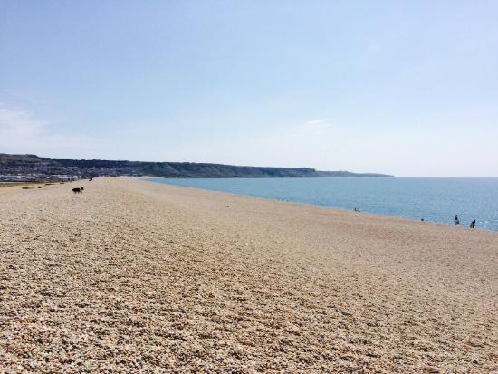 Weymouth, UK: Had an absolutely brilliant day today. Travelled 12miles on bikes enjoying the lovely local view
