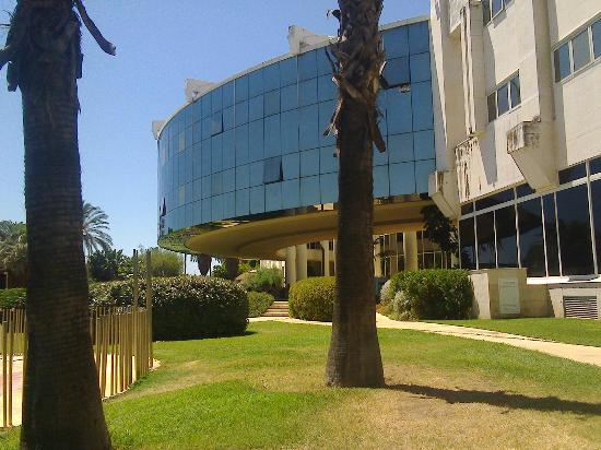 Jardin 2 picture of silken al andalus palace hotel for Al alba jardin hotel