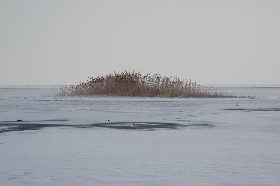 大盐湖照片