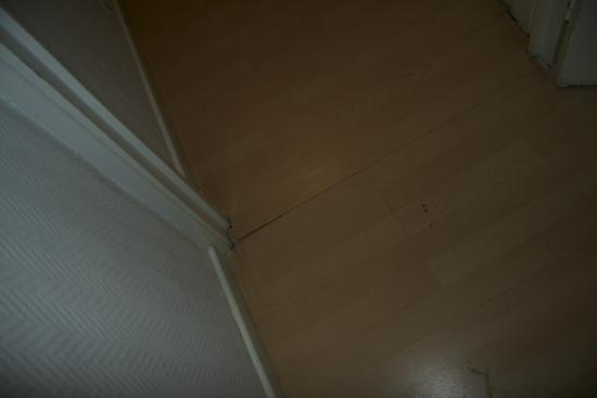 Hotel Restaurant L'Ariana : parquet rongé par l'humidité