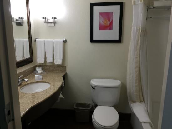 Hilton Garden Inn Sarasota - Bradenton Airport: Bathroom - adequate - nice shower pressure