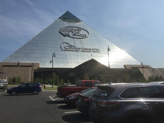 Sheraton Memphis Downtown Hotel B Pro S Pyramid