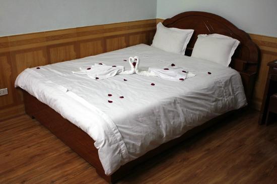 Avi Airport Hotel: кровать с лебедями