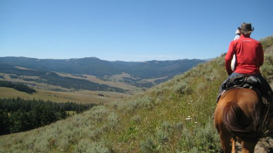 Covered Wagon Ranch: Typical view from horseback