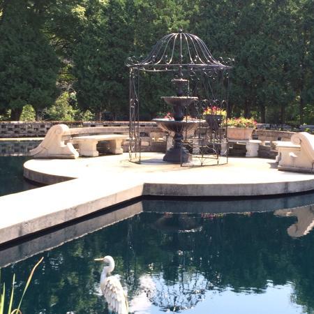 The Felt Estate: Lovely water garden