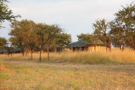 Mara Under Canvas Tented Camp: Tent