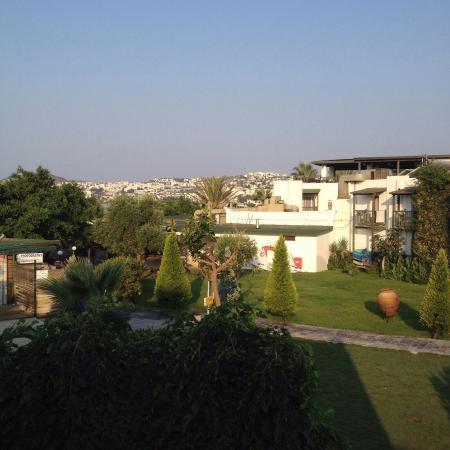 Ayaz Hotel 사진