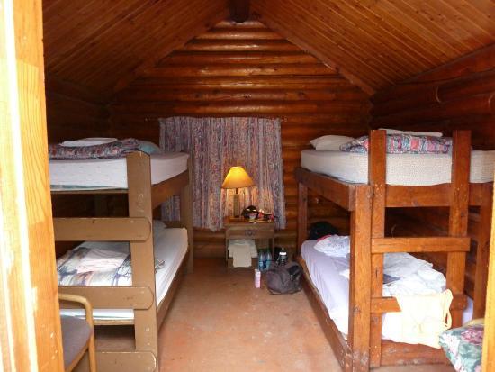 Lazy Lizard International Hostel: cabin