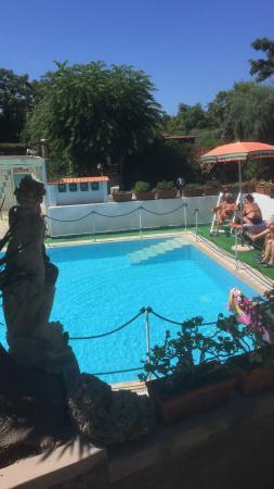 Hotel Villa Hibiscus: É meraviglioso 🎉🎉🎉 Grazie hibiscus