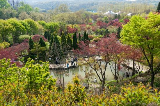 Hantaek Botanical Garden
