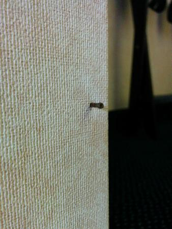 Days Inn Columbus East: Nail sticking out of the wall near the bathroom