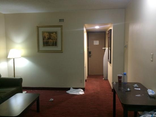 Argyll Plaza Hotel: Really dirty and smelly room-