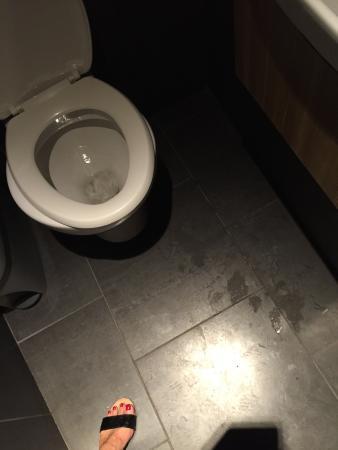 Peeing in brighton