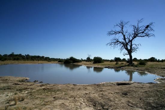 Nogatsaa and Tchinga: Nxunxutsla Pan