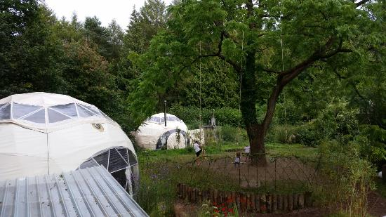 Dome Garden: Great long weekend in a hobbity!