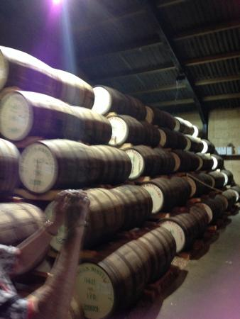 East Harling, UK: This is where the whiskey is stored