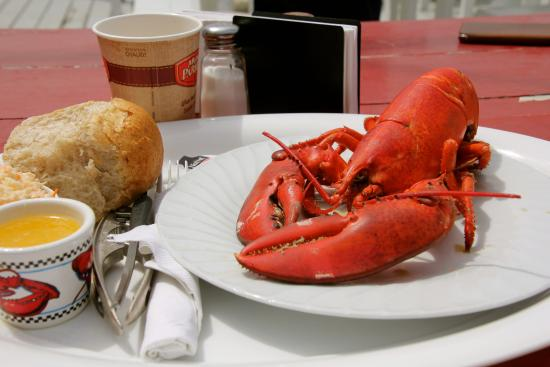 Petit Passage Cafe : Sweet Lobster