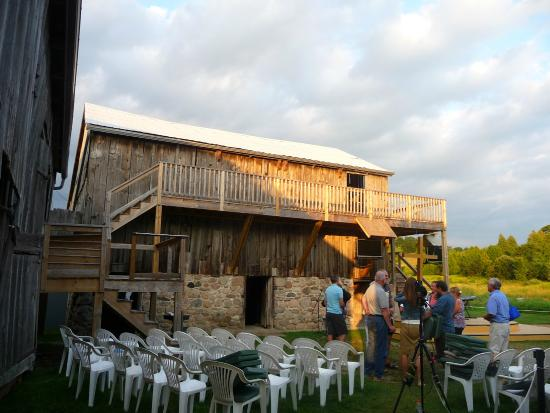 Millbrook, แคนาดา: The main stage. Yes it is a barnyard and barn swallows make cameo appearances.