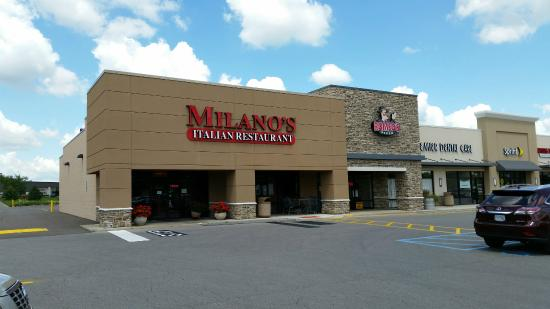Milano S Italian Restaurant Columbus Reviews