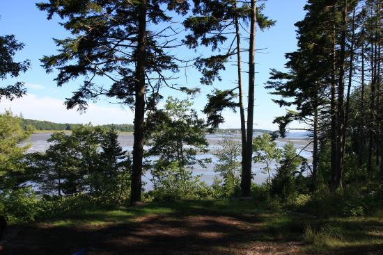 Sagadahoc Bay Campground: Oceanside Site