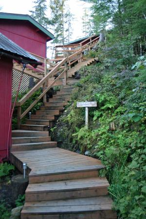 Green Rocks Wilderness Lodge : Stairway to Heaven and it is Heaven up there~!