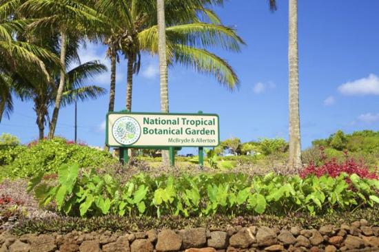 Entrance to the south shore visitors center picture of - National tropical botanical garden kauai ...