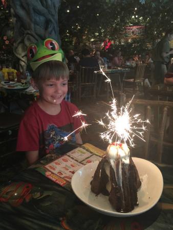 Rainforest Cafe Birthday Cake