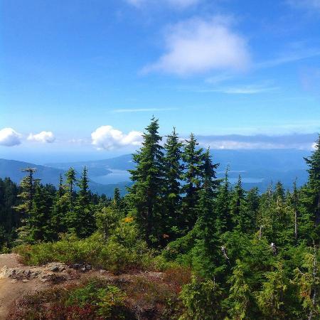 Cypress Mountain: Black Mountain Summit
