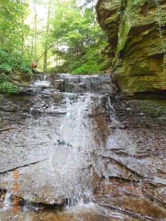 hidden valley cabin 60 acres pond creek waterfalls