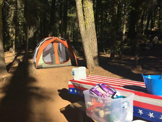 Crane Flat Campground : Site 530