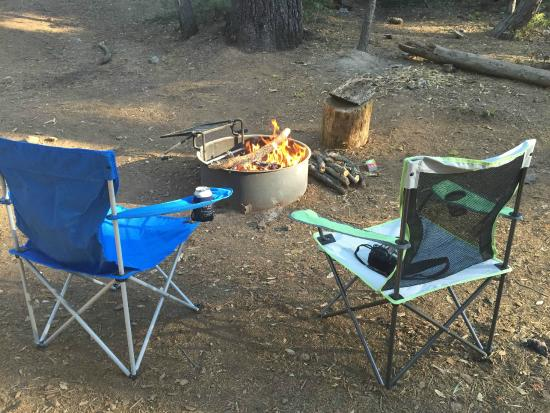 Crane Flat Campground: We didn't buy any firewood!