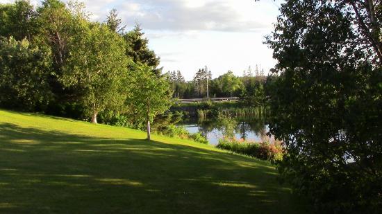 Van Dyke's Lakeview Bed & Breakfast: The lake