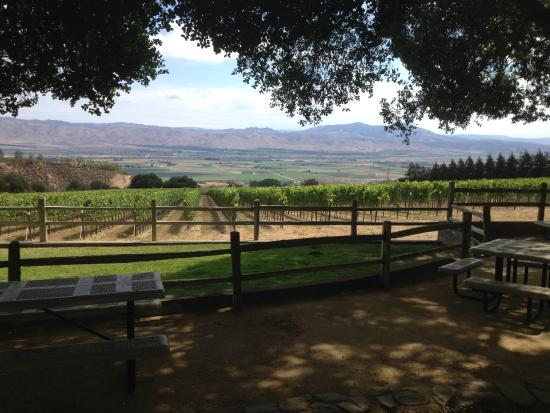 Smith & Hook Winery: Picnic area near tasting room
