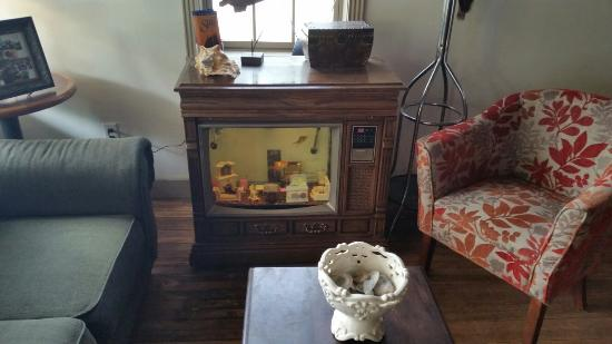 Baileys Harbor, WI: Aquarium in an old television set at entry