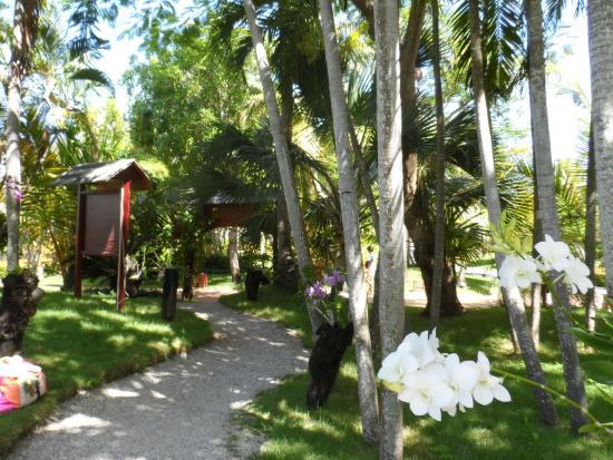 Rio Laura Delta Lodge : Paz