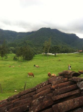 Hacienda San Antonio Updated 2017 Ranch Reviews
