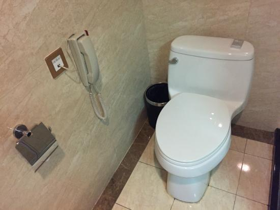 Airport Express Hotel Chengdu: Toilet