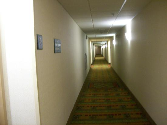 Homewood Suites by Hilton Philadelphia Great Valley: Interior Hallway to Rooms