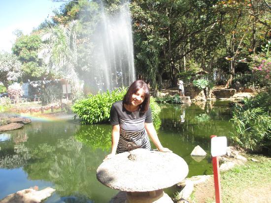 Hotel Morada Do Sol: Jardim japonês, que fica próximo ao hotel.