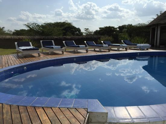 Ngerende Island Lodge: pool area