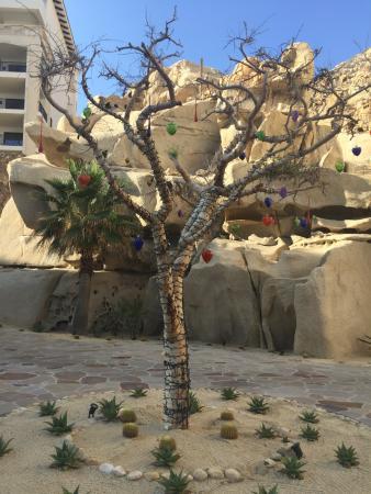 Best resort in Cabo!!