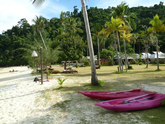 Thanya Beach Resort : beach area