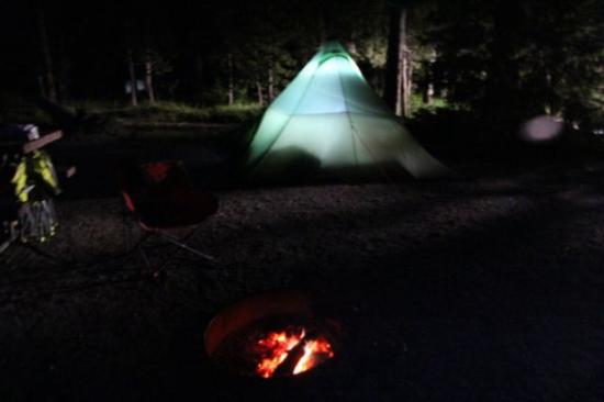 Bridge Bay Campground: Loop e