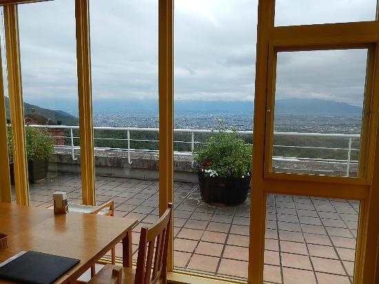 Wine Terrace : 室内からの眺め