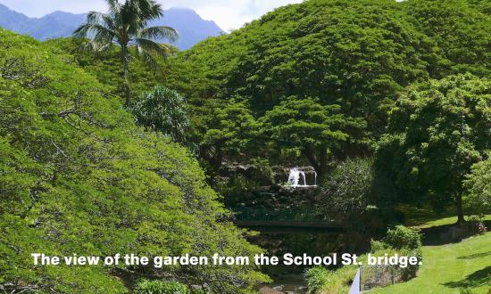 Lili'uokalani Botanical Garden: Liliuokalani Botanical Garden